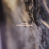 The Unknown (feat. Ayelle)