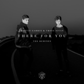There for You: The Remixes - Martin Garrix & Troye Sivan