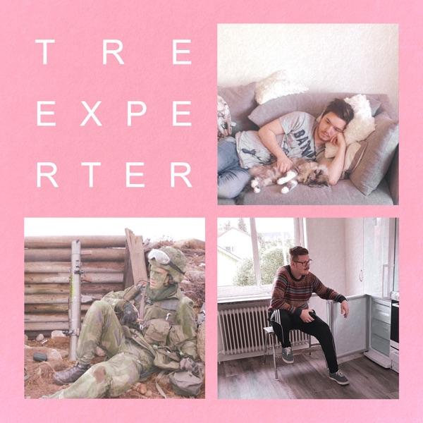 Tre Experter