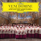 Massimo Palombella & Sistine Chapel Choir - Veni Domine: Advent & Christmas At The Sistine Chapel  artwork