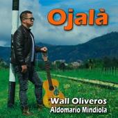 WALL OLIVEROS - Ojalá (feat. ALDOMARIO MINDIOLA) ilustración