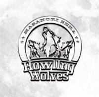 世良公則 - Howling Wolves  feat.ダグ・アルドリッチ artwork