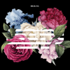 Download Lagu BIGBANG - FLOWER ROAD