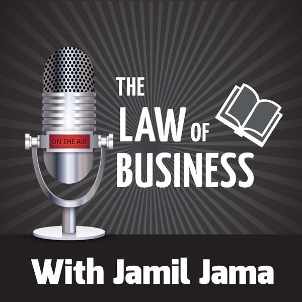 The Law Of Business: Interviews With Entrepreneurs
