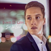 James D. Gish - So in Love - EP  artwork