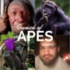 Bunch of Apes Podcast