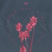 Розовое вино (feat. Feduk) - Allj