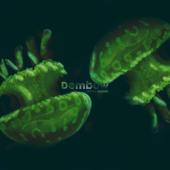 Dembow - Danny Ocean