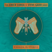 Chick Corea & Steve Gadd - Chinese Butterfly  artwork