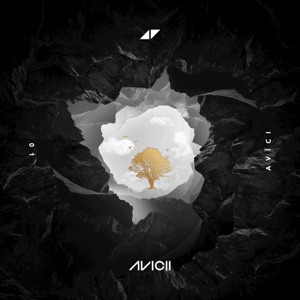 Avicii - Without You