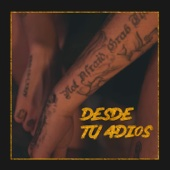 Desde Tu Adiós (feat. Piter-G, Zarcort & Kronno Zomber)