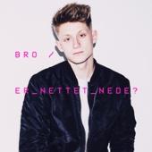 Bro - Er Nettet Nede? artwork