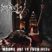 Dying Fetus - Wrong One to F**k With  artwork