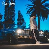 Joey Jewish - The Vantes Project  artwork