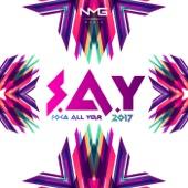 S.A.Y (Soca All Year) 2017