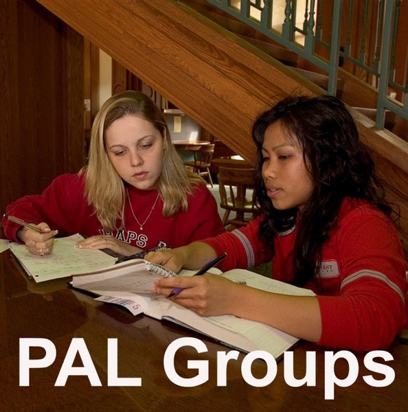 Peer Assisted Learning (PAL) Groups Podcast: College Group Tutoring and Study Review Groups