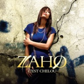 C'est chelou (Version radio) - Single