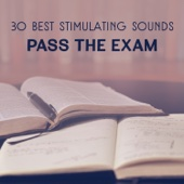 Brain Stimulation Consort - 30 Best Stimulating Sounds – Pass the Exam, Zen Music to Improve Mind Concentration, Brain Training & Practise Memory artwork
