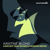 Love Shy (Sam Divine & CASSIMM Extended Remix)