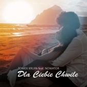 Dla Ciebie Chwile (feat. Nowator) [Tropical]