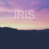 Kina Grannis - Iris artwork