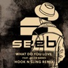 What Do You Love feat Jacob Banks Hook N Sling Remix Single