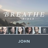 Breathe Bible: Gospel of John