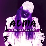 Dye My Hair (Felon Remix) - Single