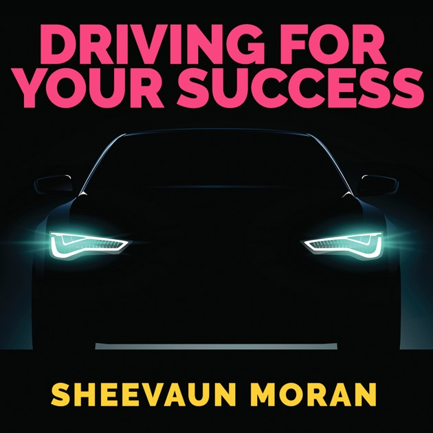 the five fundamental success drivers in Success drivers of fiction books: an empirical analysis of  finds that key  marketing considerations—such as popular authors (stars), special.