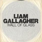 Wall of Glass - Single