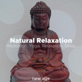 Natural Relaxation - Relaxing Instrumental Blissful Music for Meditation, Yoga, Relaxation, Sleep