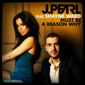 Must Be a Reason Why (Guy Katsav Radio Edit) [feat. Shayne Ward] - Single