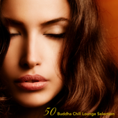 50 Buddha Chill Lounge Selection (Compiled by Shadesgrey Dj)
