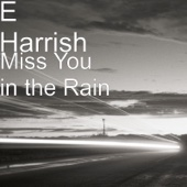 E Harrish - Miss You in the Rain  artwork