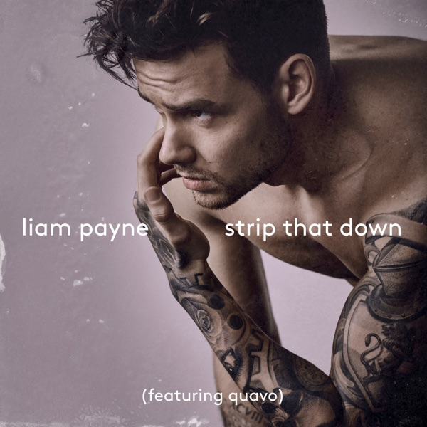 Strip That Down Nevada Remix feat Quavo - Single Liam Payne CD cover