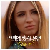 Feride Hilal Akın - Bilir mi? (feat. Enbe Orkestrası) artwork