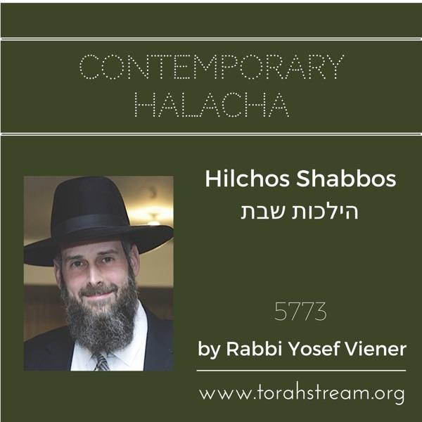 Hilchos Shabbos 5773