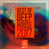 Best of Deep House 2017, Vol. 06