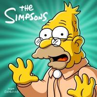 The Simpsons, Season 24 (iTunes)