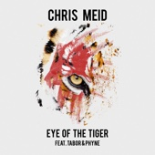 Eye of the Tiger (feat. Tabor & Phyne)