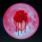 Chris Brown - Heartbreak on a Full Moon  artwork