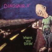 Dinosaur Jr. - Not the Same artwork