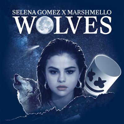 Wolves - Selena Gomez & Marshmello song