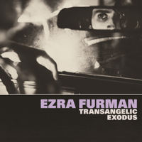 Descargar mp3 Ezra Furman Suck the Blood From My Wound