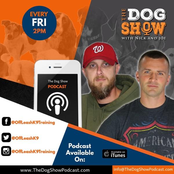 The Dog Show with Nick and Joe