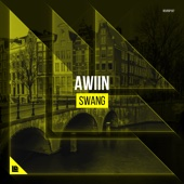 Awiin - Swang (Extended Mix) artwork