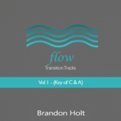 Brandon Holt - Flow Transition Tracks, Vol. 1 (Key of C and A)  artwork