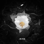 Avicii - Lonely Together (feat. Rita Ora)