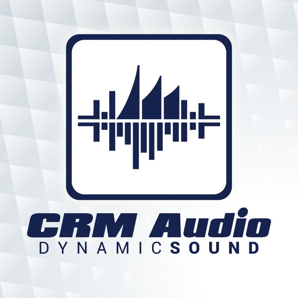 CRM Audio -- The Dynamics 365 Podcast