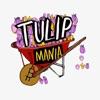 Tulip Mania